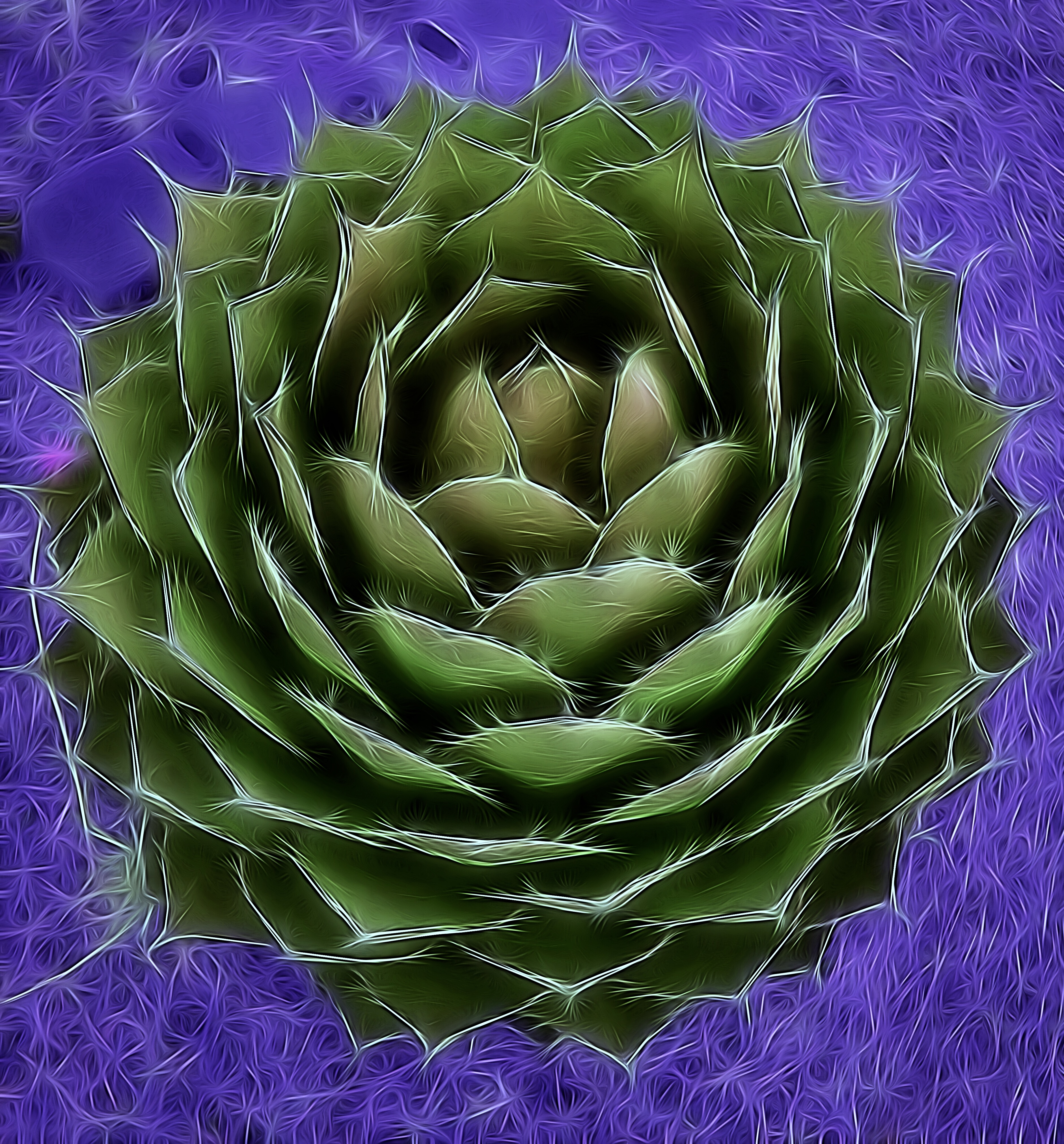 Artistic Agave Green/Purple