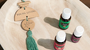 November 2020 Promotions from Young Living