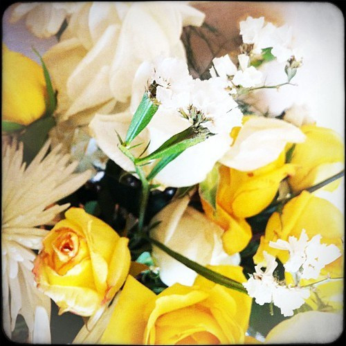 228: flowers from brother's funeral are wilting.