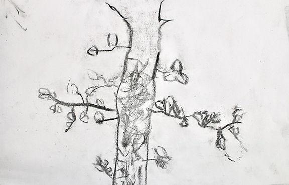 Senior tree drawing.jpg