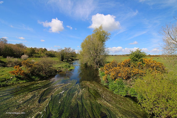 DBegley River Bann.jpg