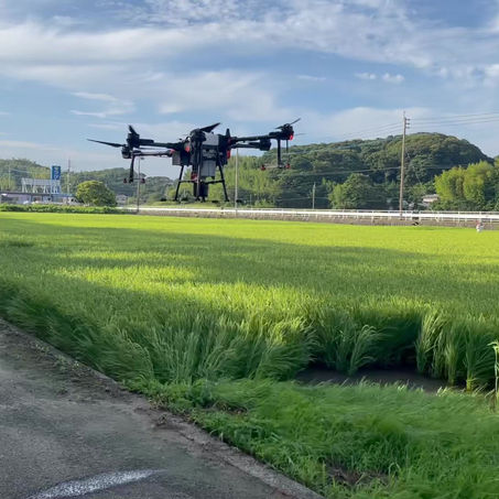 北九州市若松区で水稲補正防除をおこないました