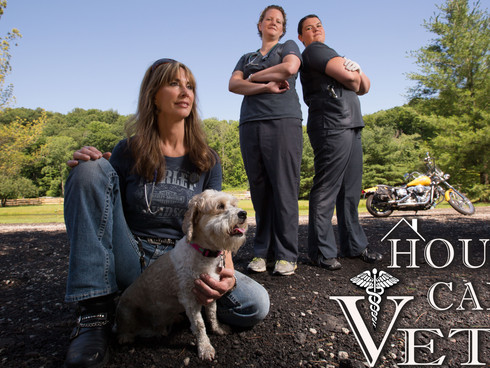 House Call Vets Website Goes Live!