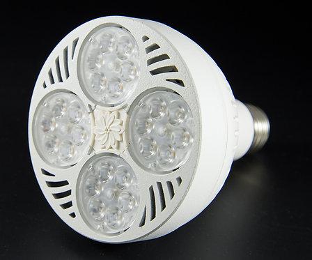 LED PAR30 HD