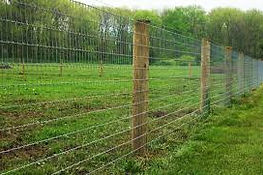 Woven wire,American wire, Goat fence, catte fence, sheep fence