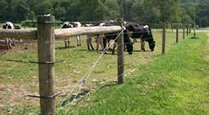 high tensile fence, cattle fence, electric fence