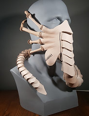 Fixed Size leather Face Hugging Mask, facehugger, alien costume mask