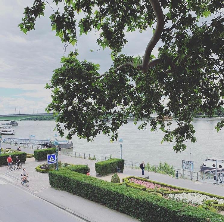 Rhein Ufer