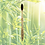 Thumbnail: Escova de Bambu Adulto (Escolha a cor)