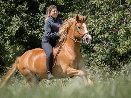 30/05 : Atelier de photographie de chevaux dans l'action