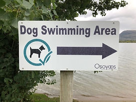 55. Lakeshore Drive Osoyoos BC dog beach