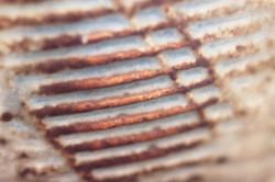Warren yunomi paddle detail