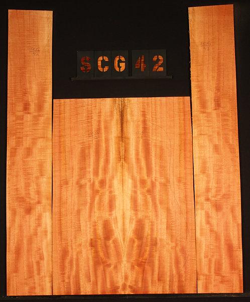 SCG 42