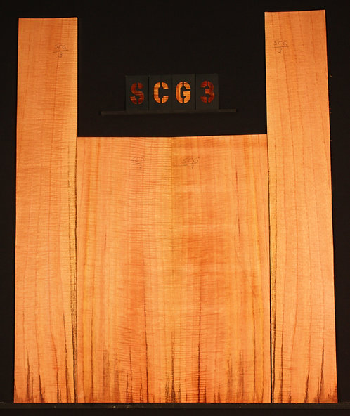 SCG 03