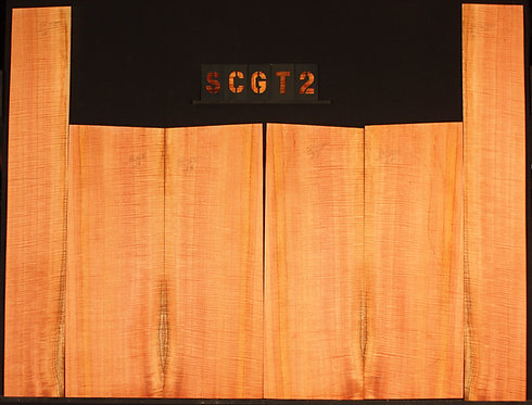 SCGT 02