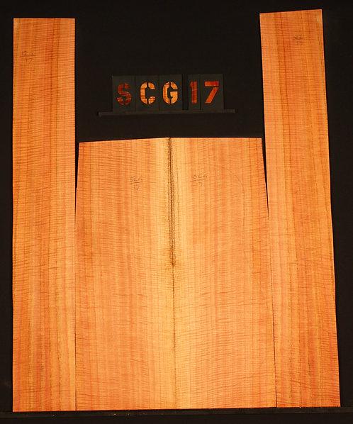 SCG 17