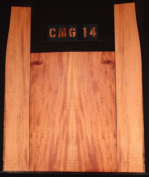 CMG 14