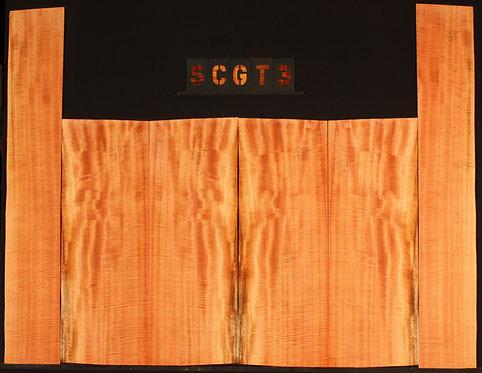 SCGT 03