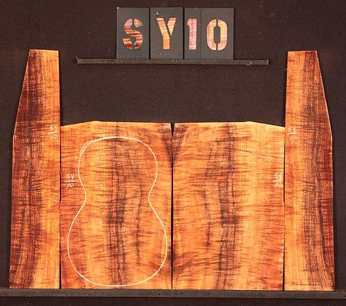 SY 10