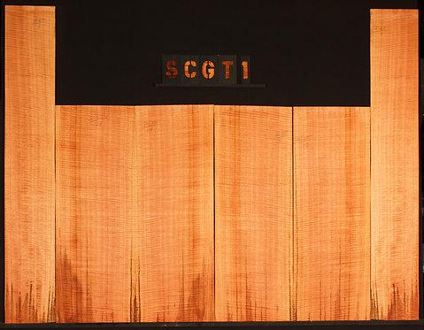 SCGT 01
