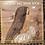 Thumbnail: The Joan Baez Ballad Book USED