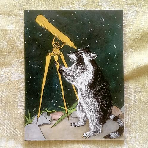 Raccoon & Telescope Greeting Card