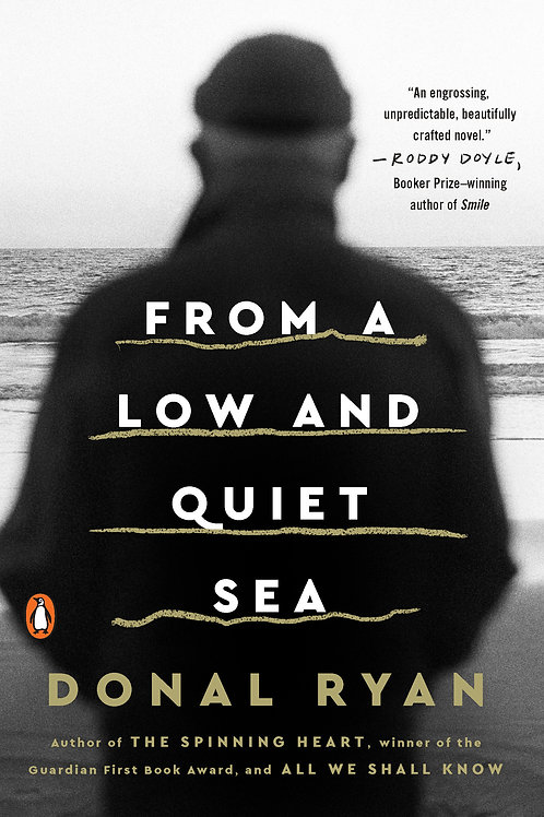 From a Low and Quiet Sea by Donal Ryan (used)