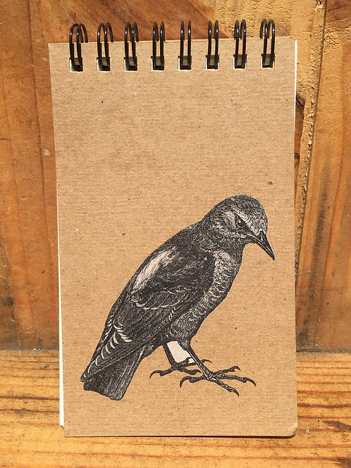 Rock Thrush Notepad