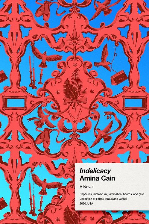 Indelicacy by Amina Cain