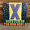 """Thumbnail: X, """"More Fun in the New World"""" USED"""
