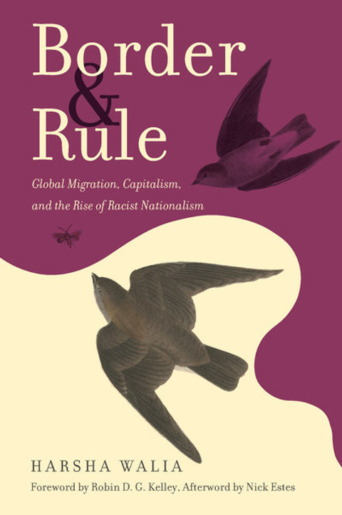 Border and Rule: Global Migration, Capitalism, and the Rise of Racist...