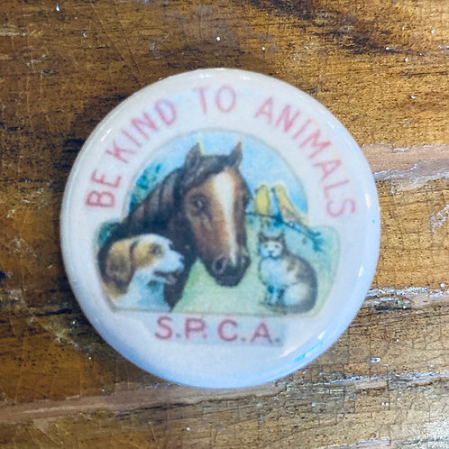 Be Kind to Animals Pin