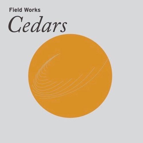 Field Works: Cedars
