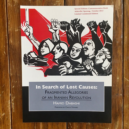 In Search of Lost Causes: Fragmented Allegories of an Iranian Revolution