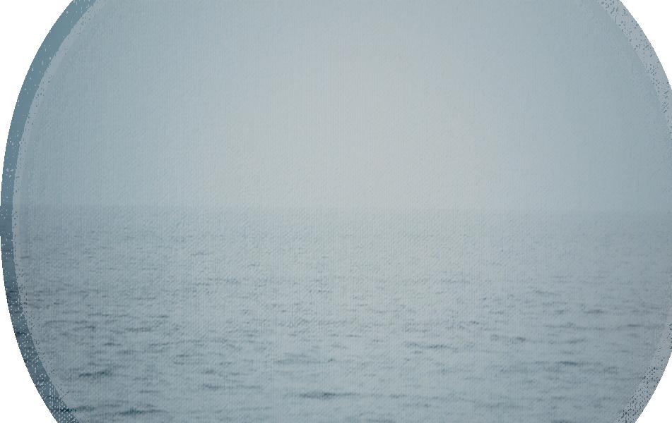 BG_canvas_Israel sea.png