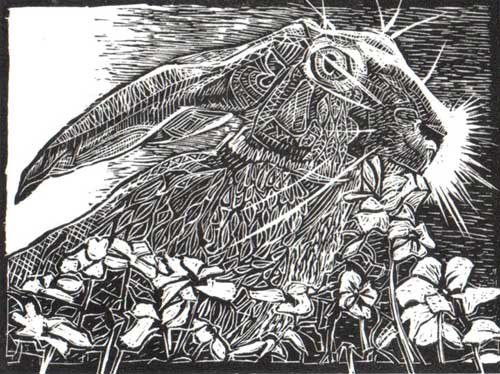 startled-hare