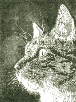 Lino Cat