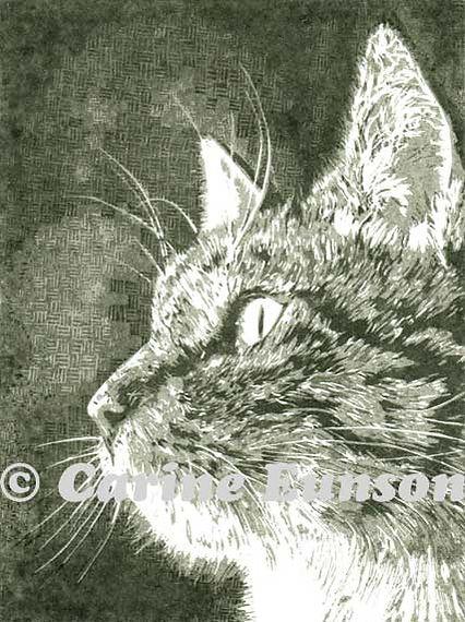 Lino-Cat.jpg