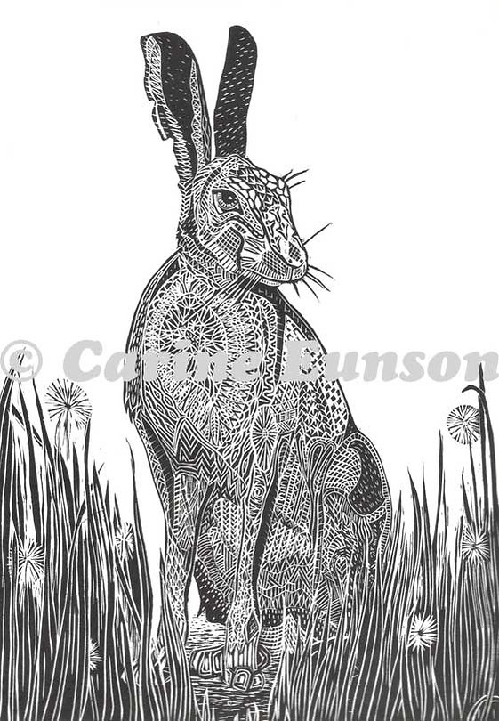 hare-style.jpg