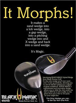 BM-morphs.jpg
