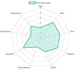 diagramme_araignée.jpg