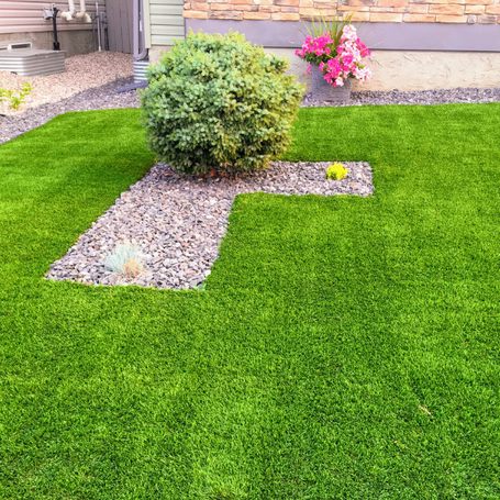 Artificial Grass & Lawn