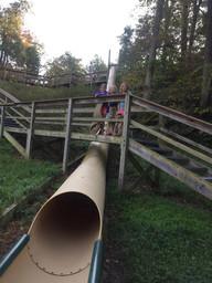 Slide Fun with Dad Deer Park, IL.jpg