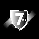 blindaje-nivel-7.png