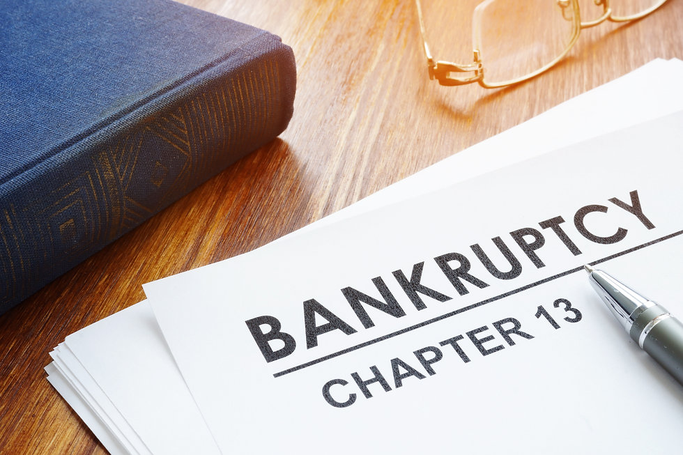 Chapter 13 bankruptcy petition and book.