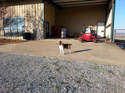 Elliot helping in the Barn