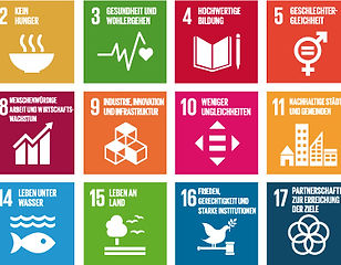 Print-SDG-icons-table-n_de.jpg