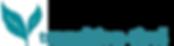 transution logo.png
