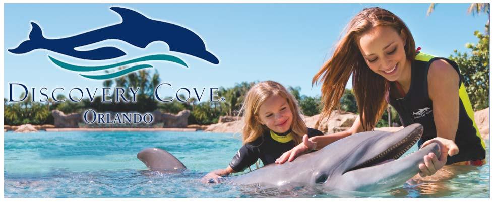 Nado com Golfinho em Discovery Cove