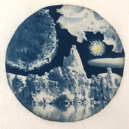 San Diego/Maui/Mono Lake: Tide Pool, Wild Parrot Feather, Wildflower, Jelly Fungus, Tufa Tower